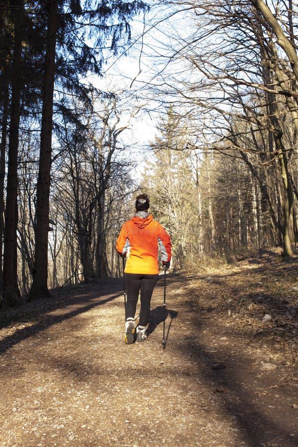 País transversal de passeio do Nordic Sportive da mulher imagens de stock