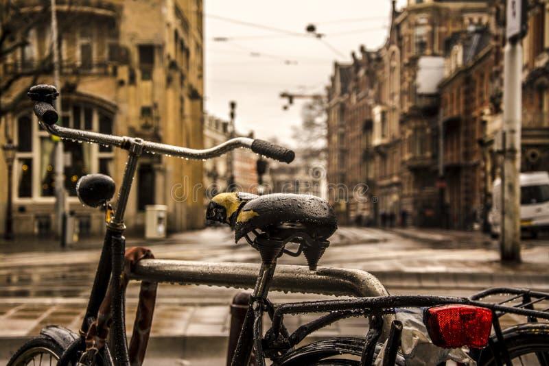 Países Baixos a terra das bicicletas imagens de stock royalty free