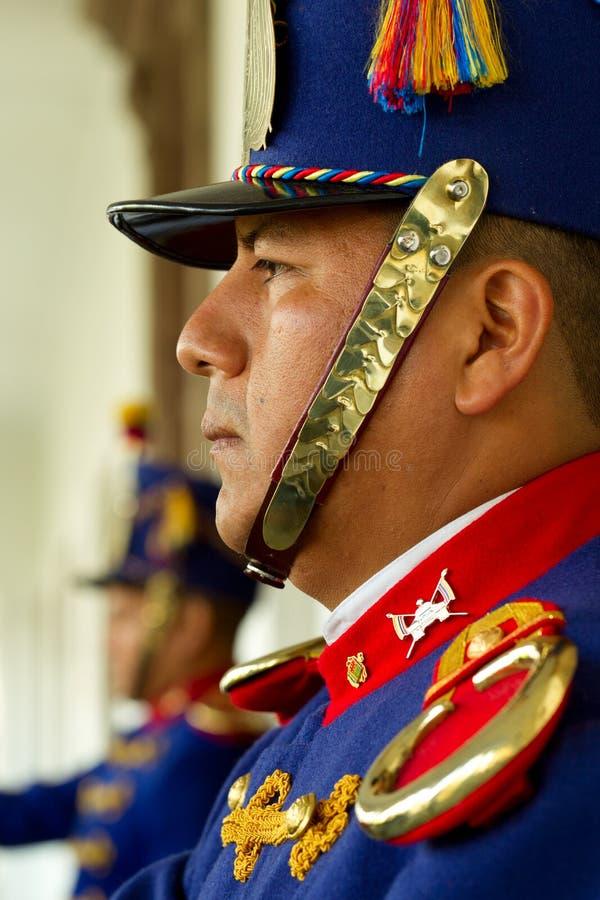 Pałac strażnicy obraz royalty free