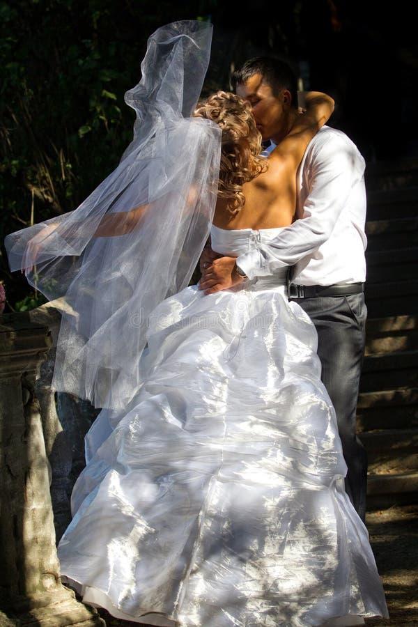 Państwa młodzi całowanie zdjęcie stock