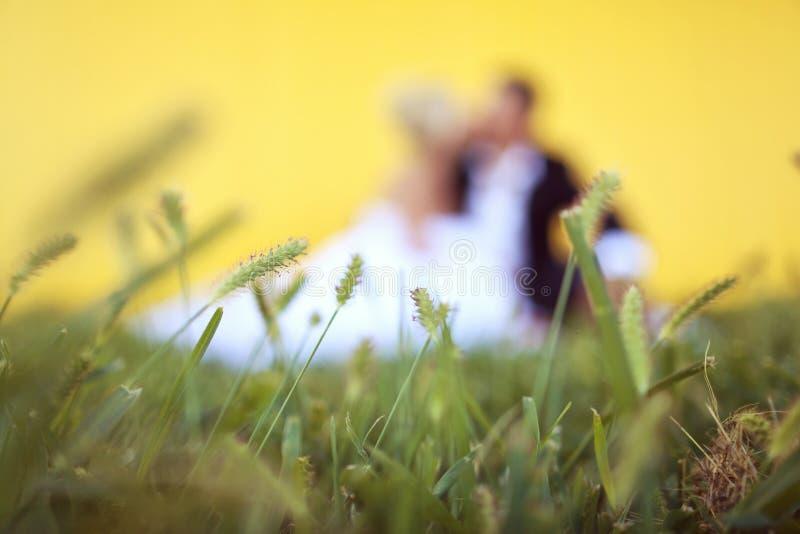 Download Państwa Młodzi Obsiadanie W Trawie Zdjęcie Stock - Obraz złożonej z bride, przytulenie: 57660128