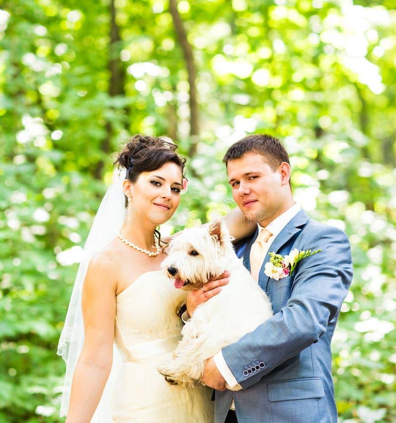 Państwo młodzi ślub z psim latem plenerowym zdjęcie royalty free