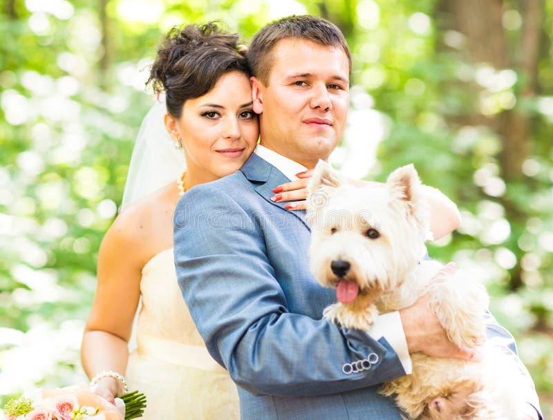 Państwo młodzi ślub z uroczym bielu psa latem plenerowym fotografia royalty free