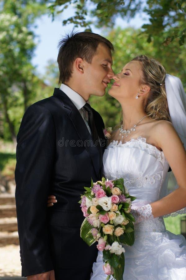 Państwo młodzi. Poślubiać zdjęcie stock