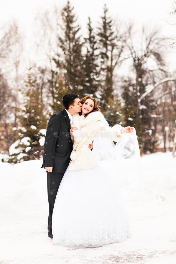 Państwo młodzi w zimie fotografia stock