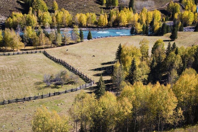 paśnik rzeka zdjęcia stock