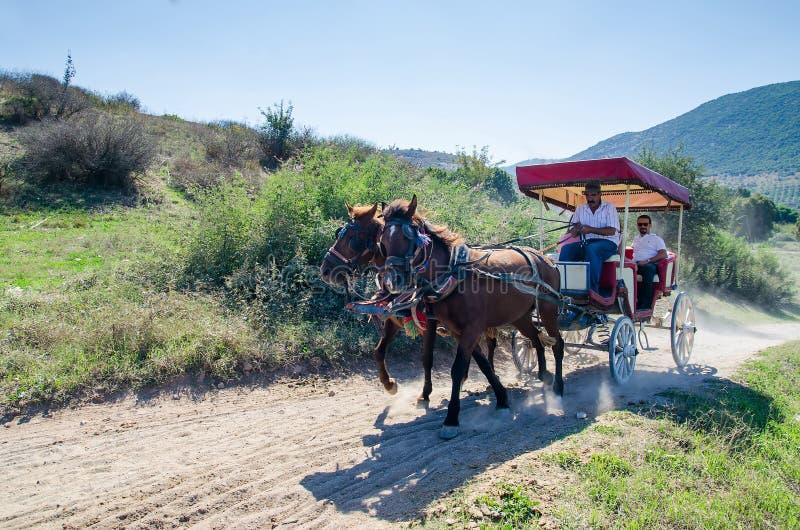 1 2015 Październik, Efes, TURCJA: Turyści podróżuje z koń rysującym trenerem przy latem Selcuk zdjęcie royalty free