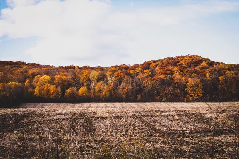 Październik w Canada fotografia stock