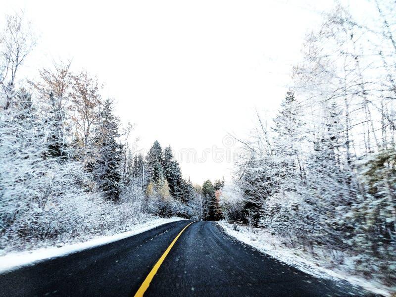 Pa?s das maravilhas do inverno fotografia de stock royalty free