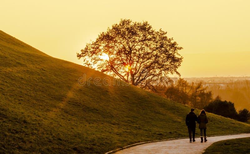 Paar dat in het park loopt royalty-vrije stock afbeelding