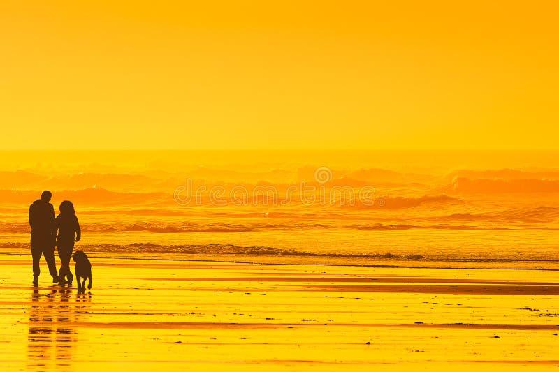 Paar die de hond op strand lopen stock fotografie