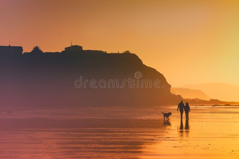 Paar die de hond op strand lopen royalty-vrije stock afbeeldingen