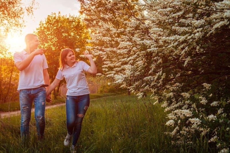 Paar die in de lente bloeiend park bij zonsondergang lopen Jonge man en vrouw die goede tijd hebben samen stock fotografie