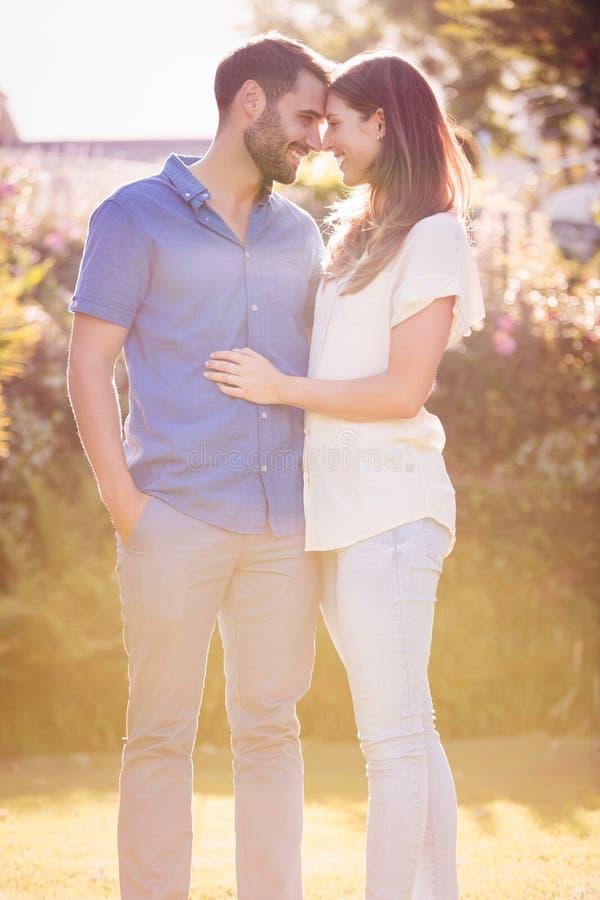 Paar die en bij park omhelzen romancing royalty-vrije stock afbeelding