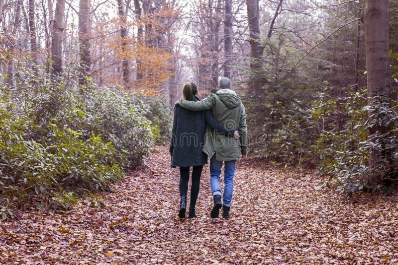 Paar die in het bos lopen stock afbeelding