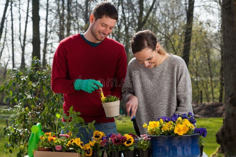 Paar die het tuin van werk genieten royalty-vrije stock afbeeldingen