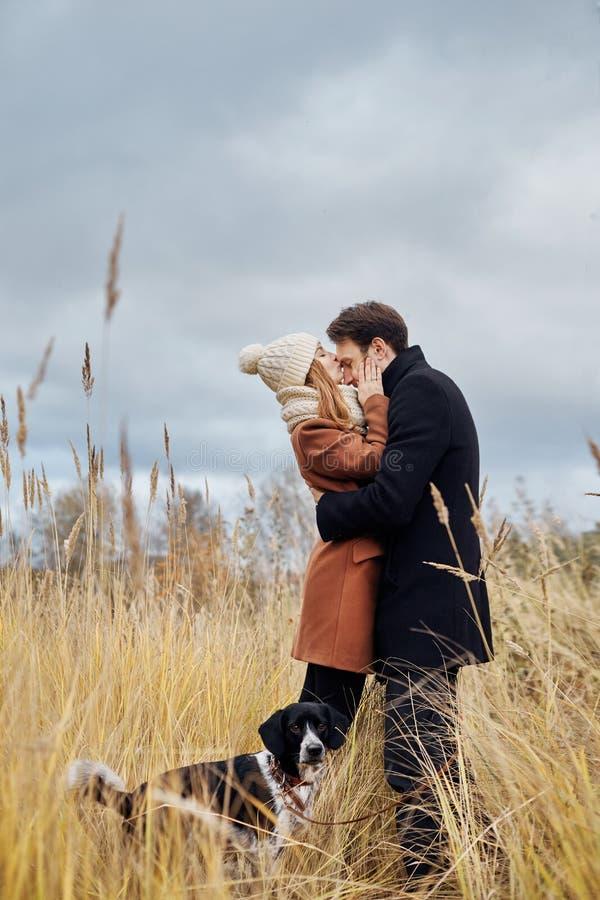 Paar die in liefde in het Park, de dag van Valentine lopen ` s Een man en een vrouw omhelzen en kussen, een paar in liefde, geneg royalty-vrije stock foto