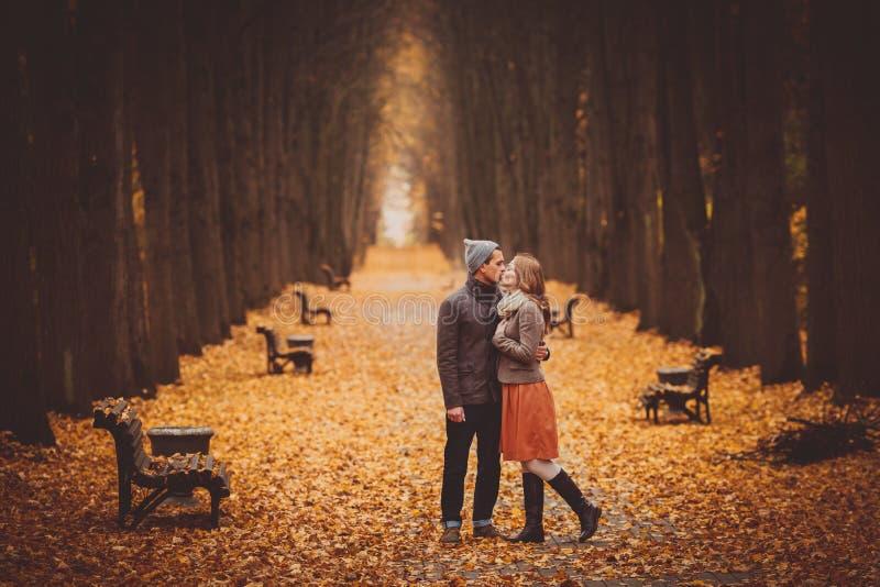 Paar die in liefde op een mooie de herfststeeg lopen in het park stock fotografie