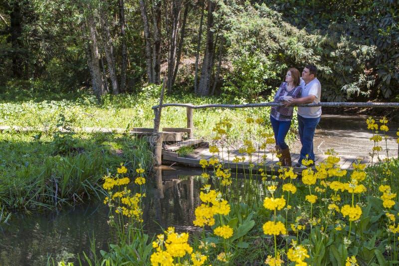 Paar die zich op brug bevinden die een rivier overzien stock fotografie