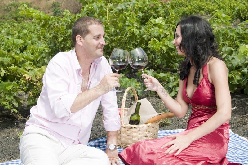Paar in een picknick in een wijngaard royalty-vrije stock afbeeldingen