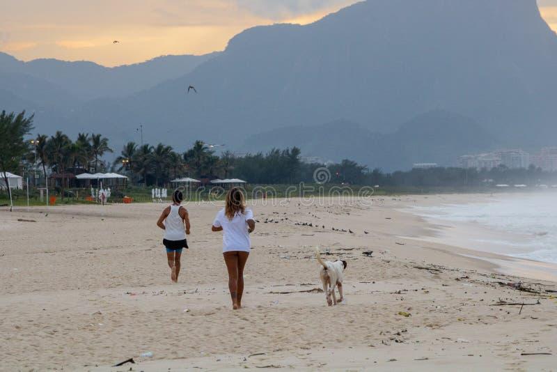 Paar en hond die op het strand van Barra da Tijuca in een mooie dageraad met de steen van Gavea op de achtergrond lopen - Rio de  royalty-vrije stock foto