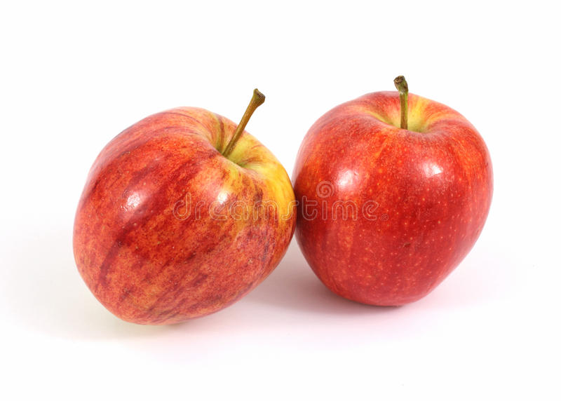 Paar-Gala-Äpfel lizenzfreies stockfoto