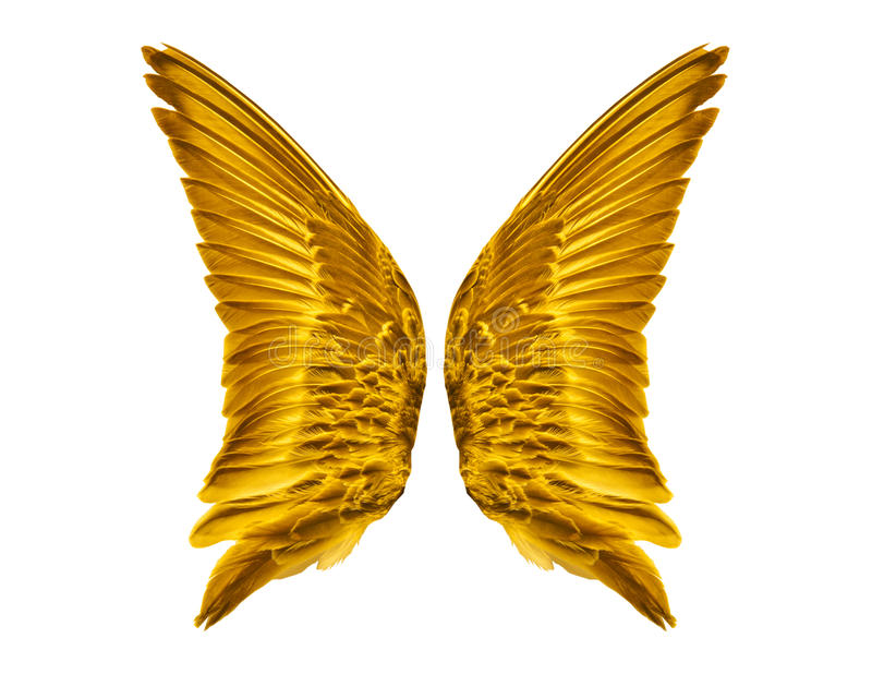 Paar Gouden Vogelvleugels stock foto