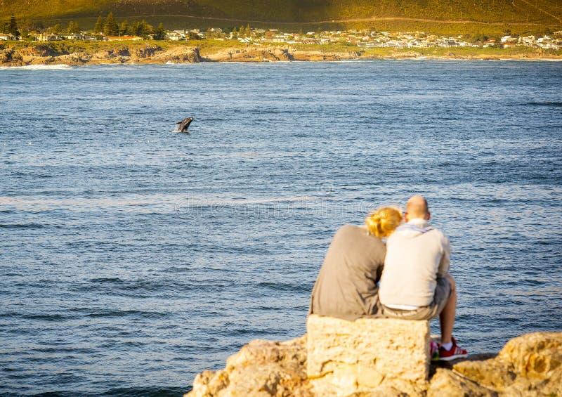 Paar in Hermanus bij Zonsondergangwalvis het Letten op royalty-vrije stock afbeelding