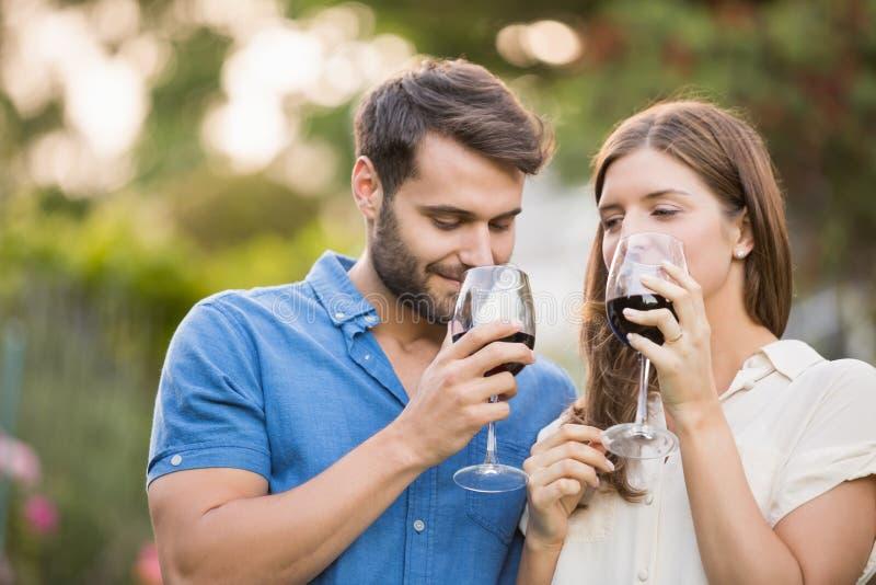 Paar het drinken wijn bij park stock afbeelding