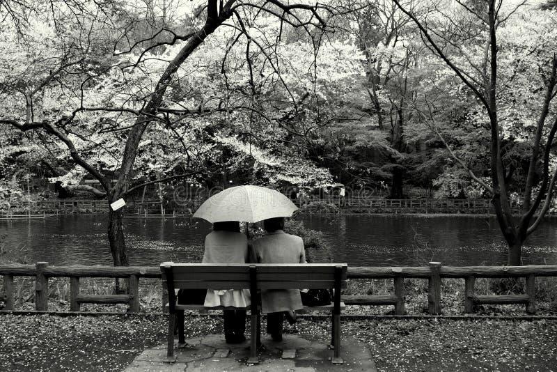 Paar in het park, Tokyo royalty-vrije stock afbeelding