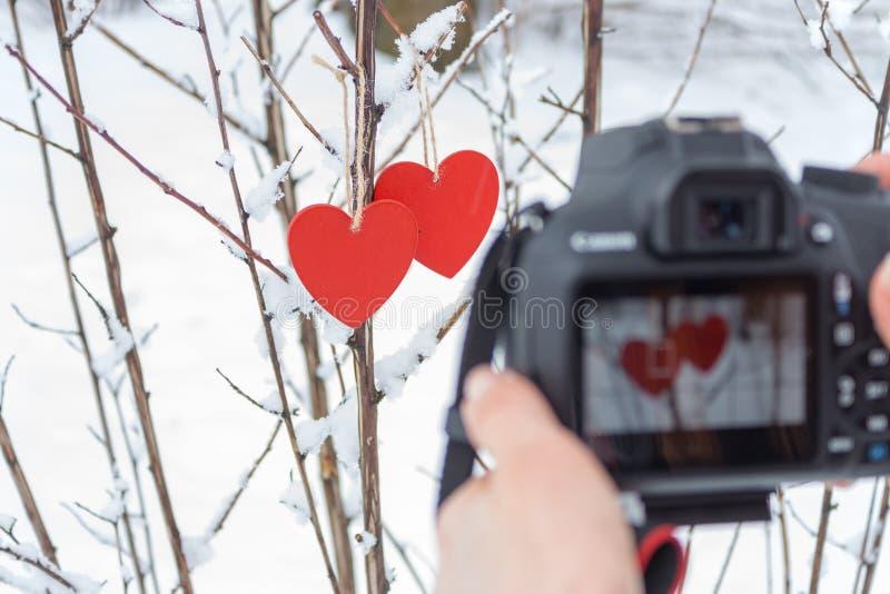 Paar houten rode harten op sneeuwboom met het bezinningsscherm in camera Het concept van de fotografiehobby Liefde en romantisch  stock afbeelding