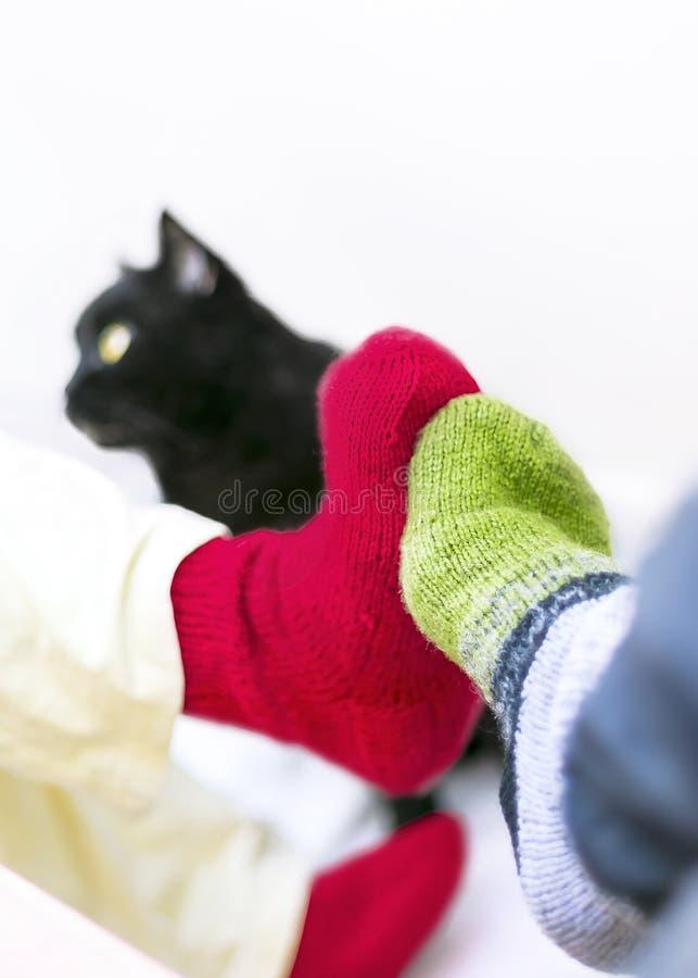 Paar in Kleurrijke Wollen Gebreide Sokken wat betreft elkaar Voeten Het zwarte kat letten op Mensen die thuis in Koud Seizoen ont royalty-vrije stock afbeelding
