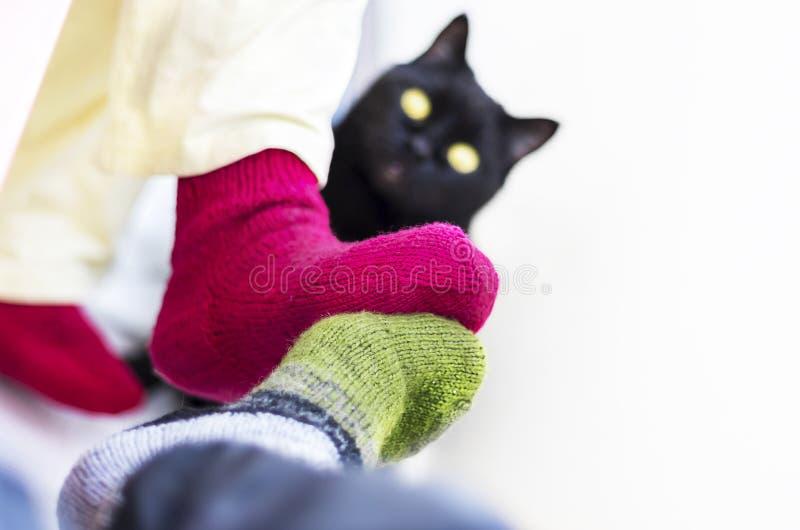 Paar in Kleurrijke Wollen Gebreide Sokken wat betreft elkaar Voeten Het zwarte kat letten op Mensen die thuis in Koud Seizoen ont royalty-vrije stock foto