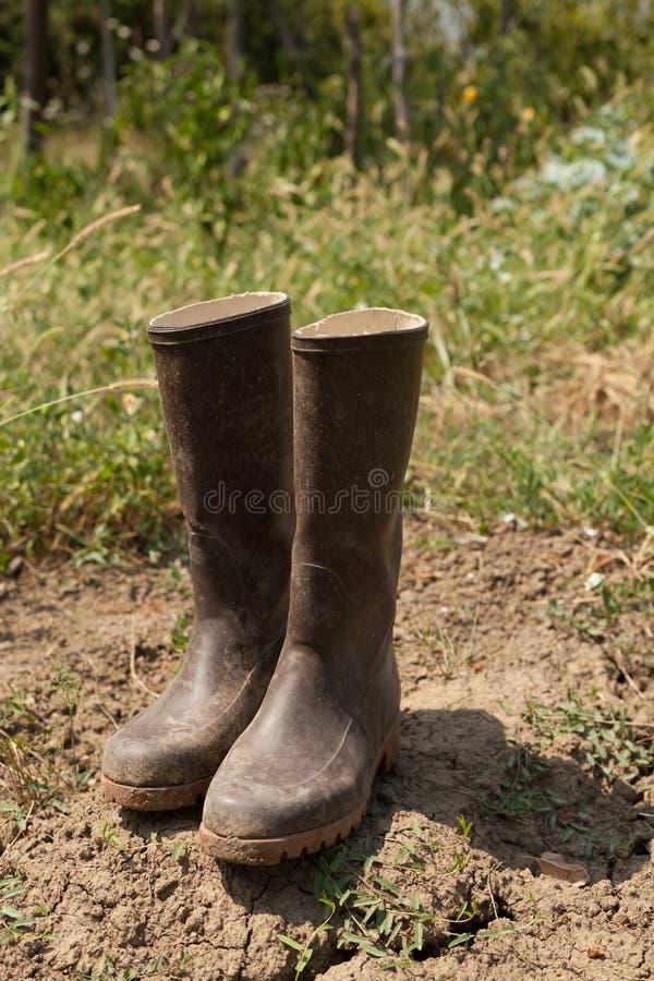 Paar laarzen in tuin stock fotografie