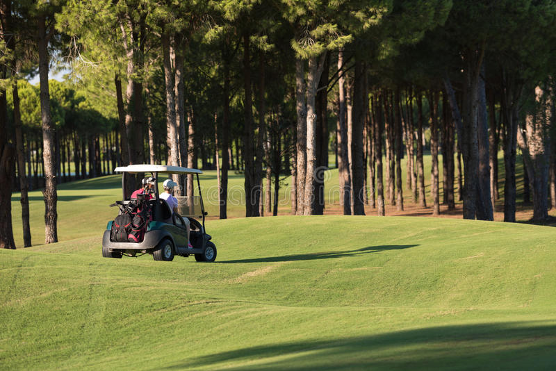 Paar in met fouten op golfcursus royalty-vrije stock foto
