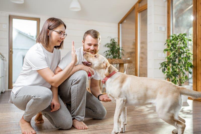 Paar met hond in het huis stock fotografie