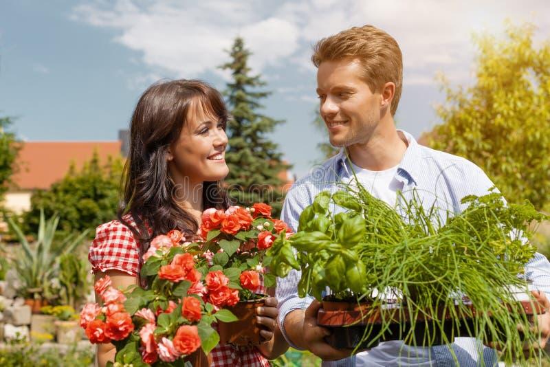 Paar in moestuin het oogsten stock afbeelding