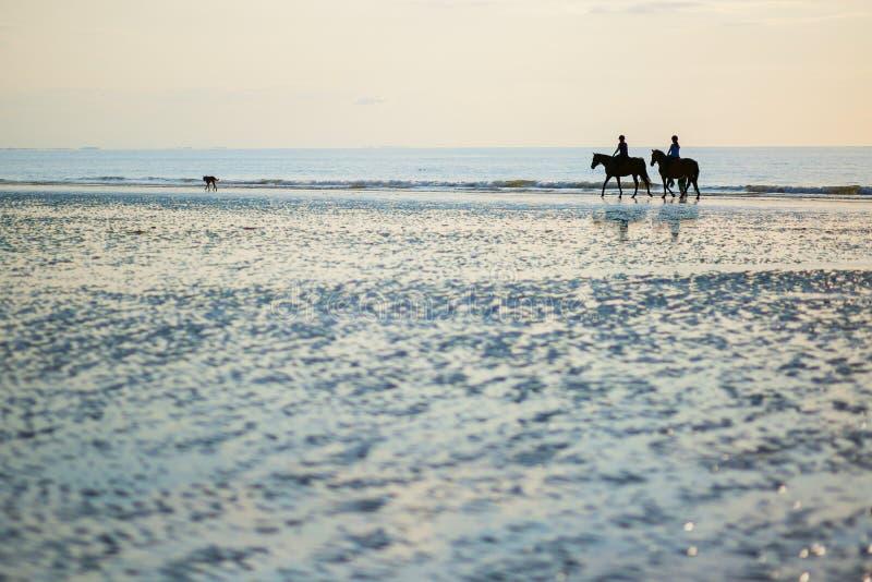 Paar op een paar paarden in Deauville, Frankrijk stock foto