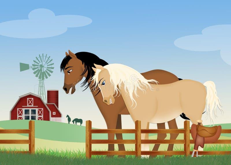 Paar paarden op het landbouwbedrijf royalty-vrije illustratie