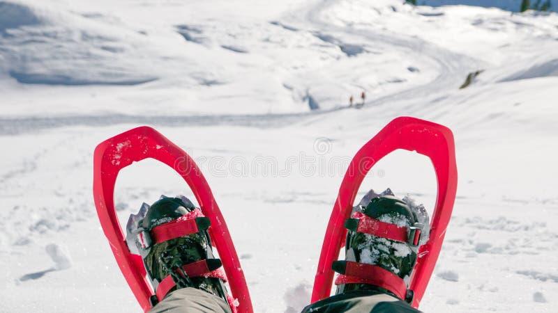 Download Paar Sneeuwschoenen Op Mensen` S Benen Stock Afbeelding - Afbeelding bestaande uit exploratie, mannetje: 107705545