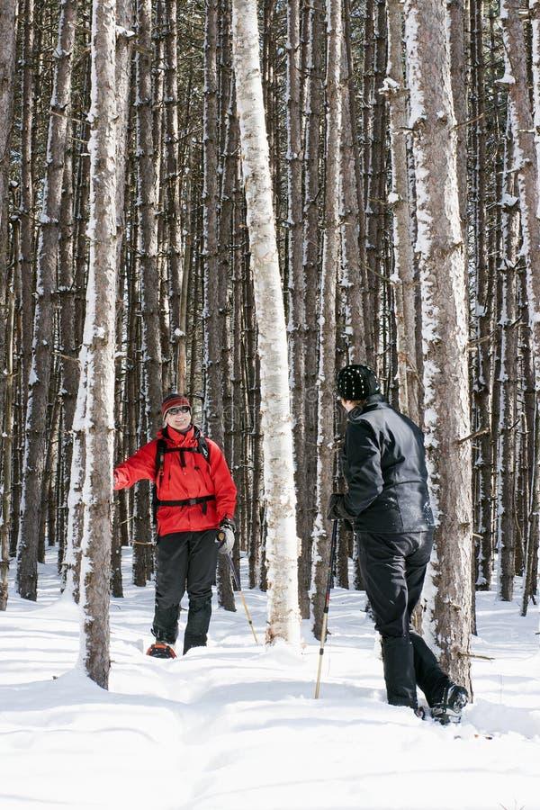 Paar Snowshoeing in het Provinciale Park van Killarney, Ontario royalty-vrije stock afbeelding
