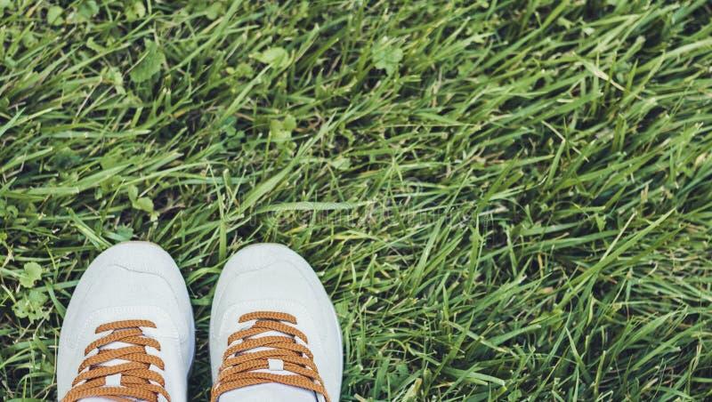Paar sportschoenen van grijs suède op het gras in park royalty-vrije stock afbeelding