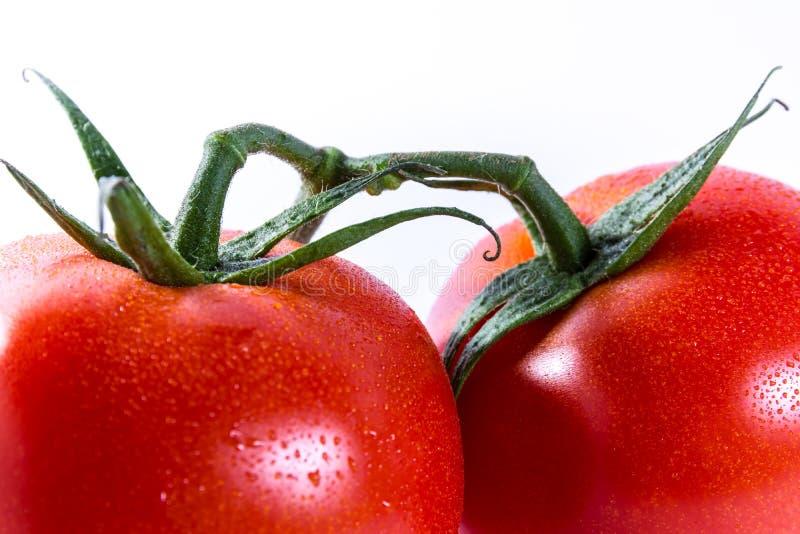 Paar Twee Tomaten Verbonden Stammen Verse Groenten die Ing koken stock afbeeldingen