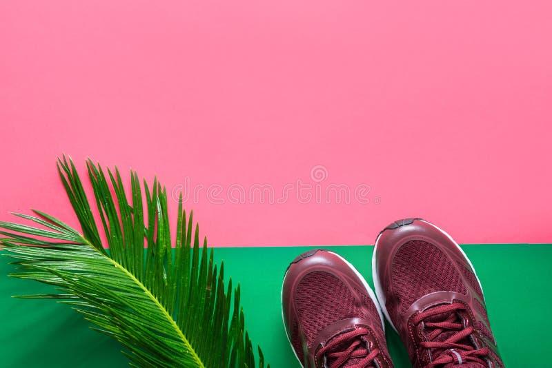 Paar van van de de opleidingsjogging van vrouwen de tennisschoenen vers palmblad op duotone fuchsiakleurig roze groene achtergron royalty-vrije stock afbeelding