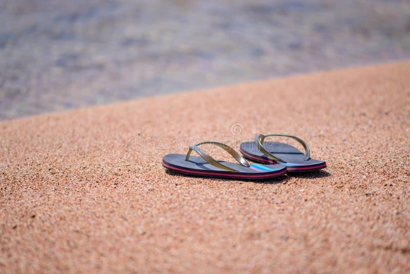 Paar van Flip Flops bij Oever van Sandy Beach royalty-vrije stock afbeelding