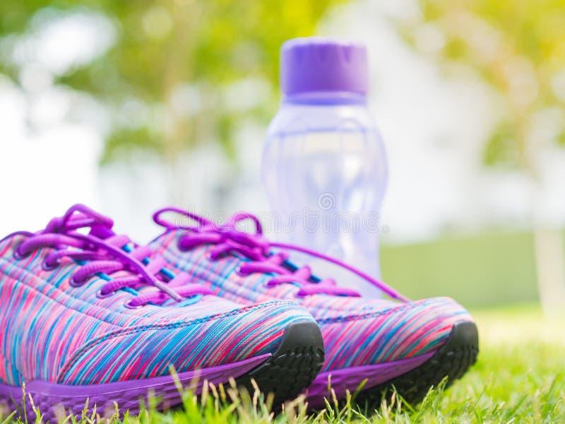 Paar van roze sportschoenen en waterfles op groen grasgebied In de achtergrondbos of parksleep Toebehoren voor lopend SP stock afbeelding
