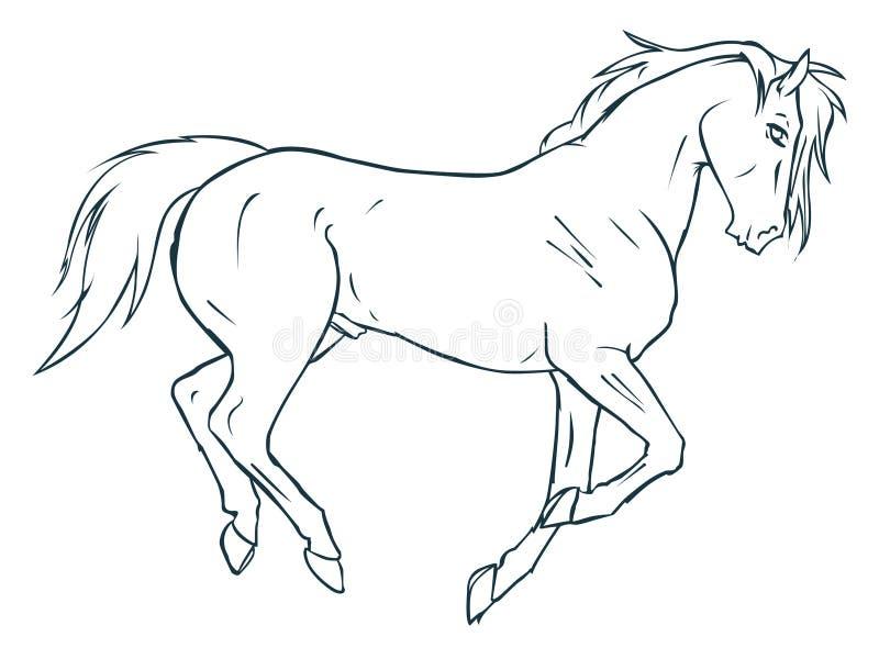 Paard 09 royalty-vrije illustratie
