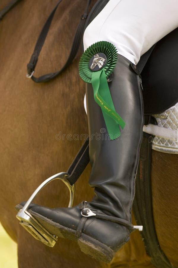 Paard dat 028 springt stock afbeelding
