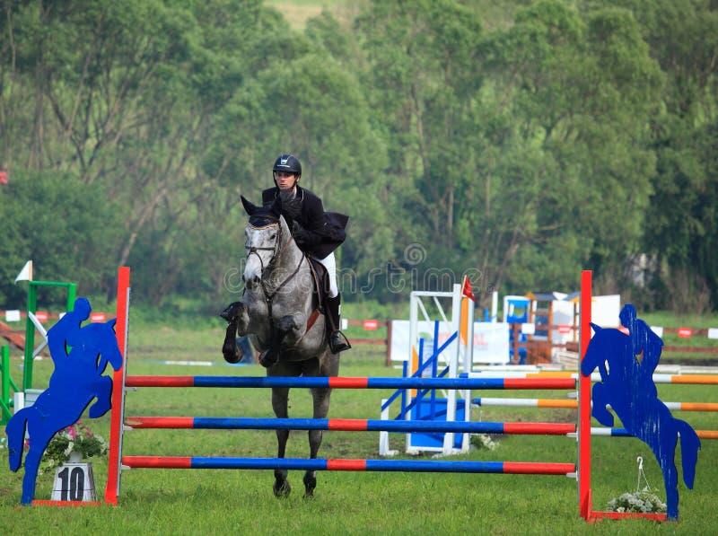 Paard dat de hindernis springt royalty-vrije stock fotografie