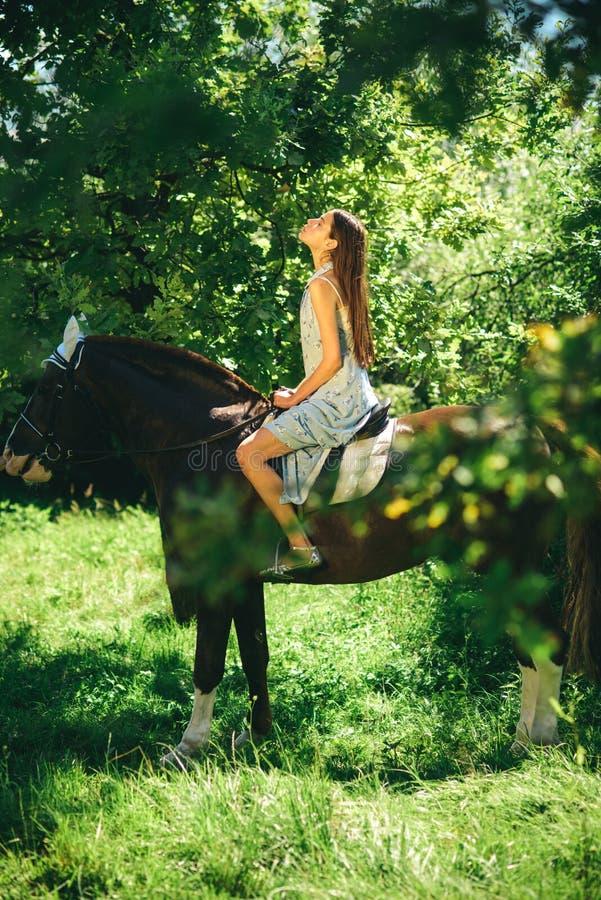 Paard de opleiding kan pret zijn Jong vrouw het berijden paard op de zomerlandschap Mooi meisje bij paardboerderij Aanbiddelijk p stock afbeelding